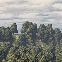SpeedTree To UDK: The Complete Workflow, Part 1 Creating The Tree